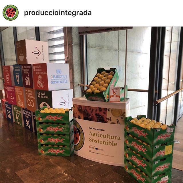 Promoción consumo manzana de Lleida en Producción Integrada Sostenible